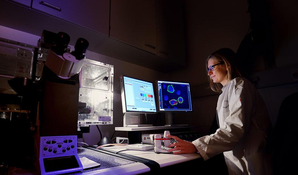 High resolution confocal microscopy