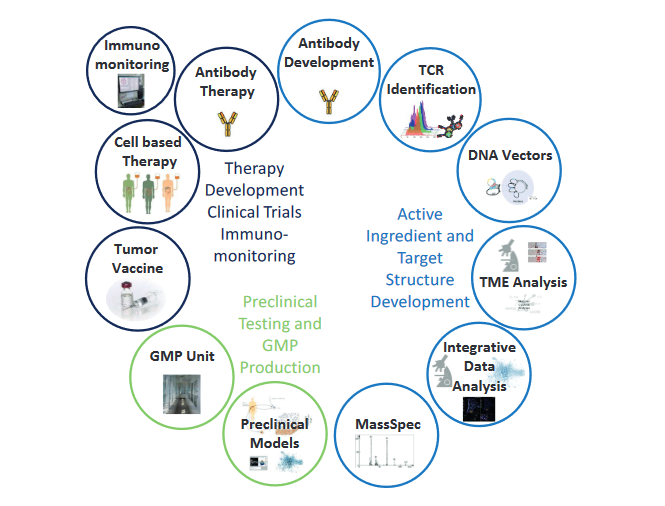 Overview of the different platforms and strategies within the Immunotherapy Program