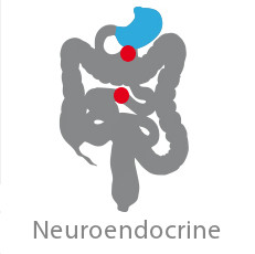 CCRP Neuroendocrine