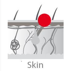 CCRP Skin