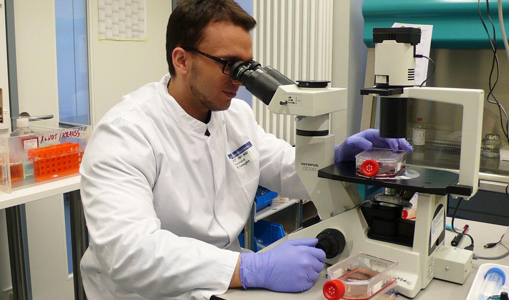 Microscopic evaluation