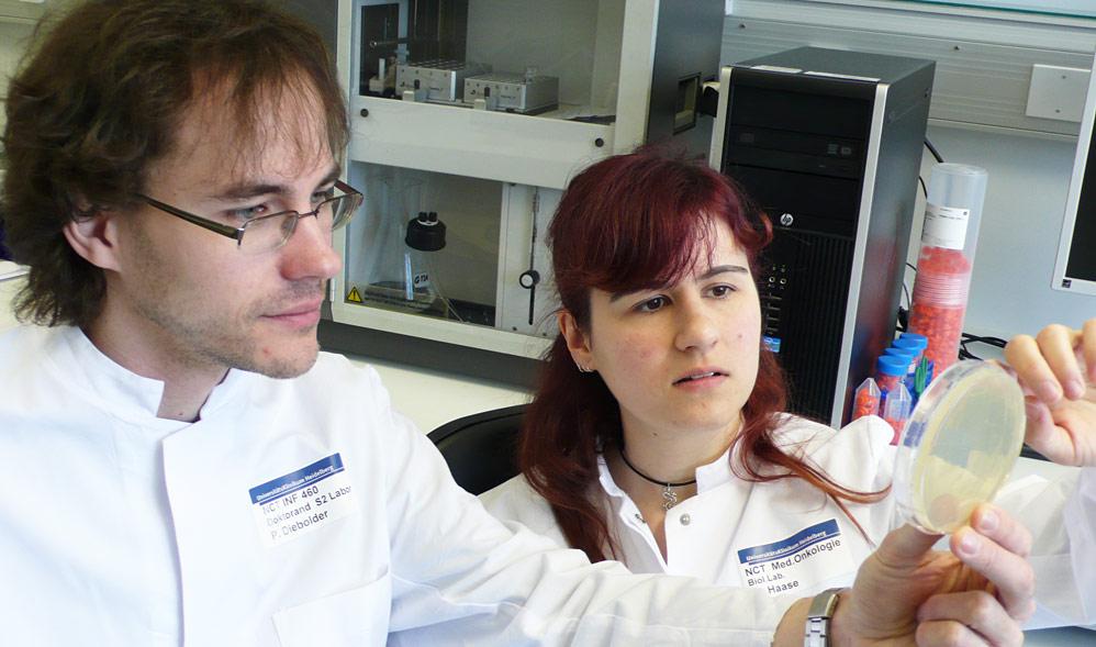 Screening of bacterial clones expressing antibody fragments