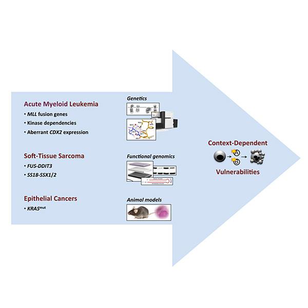 Molekulare und Zelluläre Onkologie