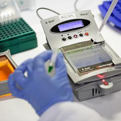 Molekulare und Gentherapie