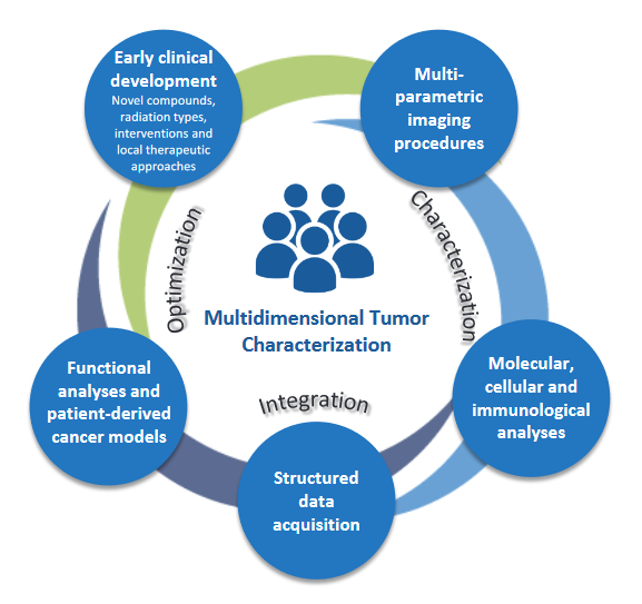 Figure 3: Overarching research strategy: multidimensional tumor characterization